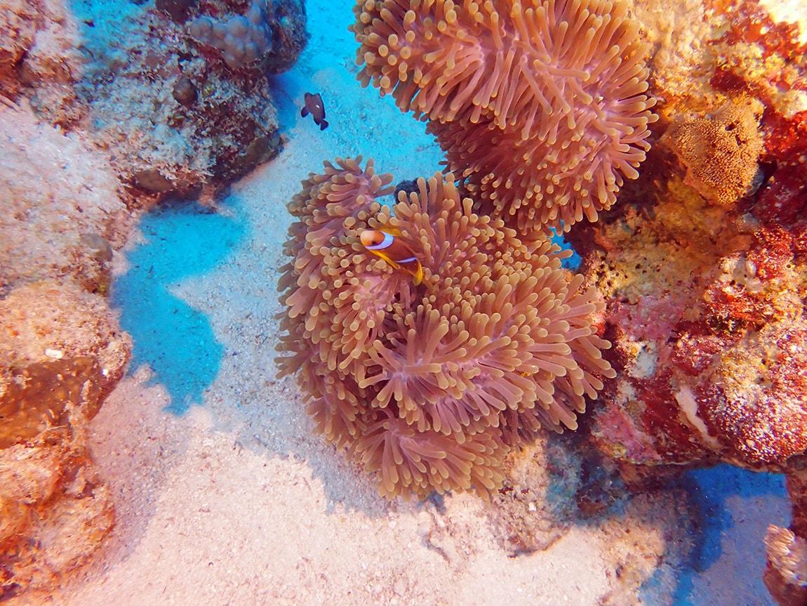 Бали 2019 | Туры и цены, обзор курортов